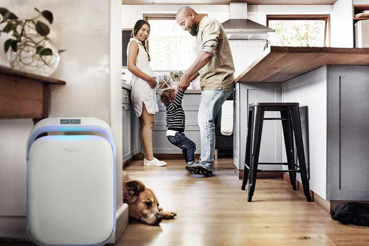 AMBREEZE Air Purification System