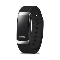 BodyKey® InBody Band Replacement Strap (Blue - Medium)